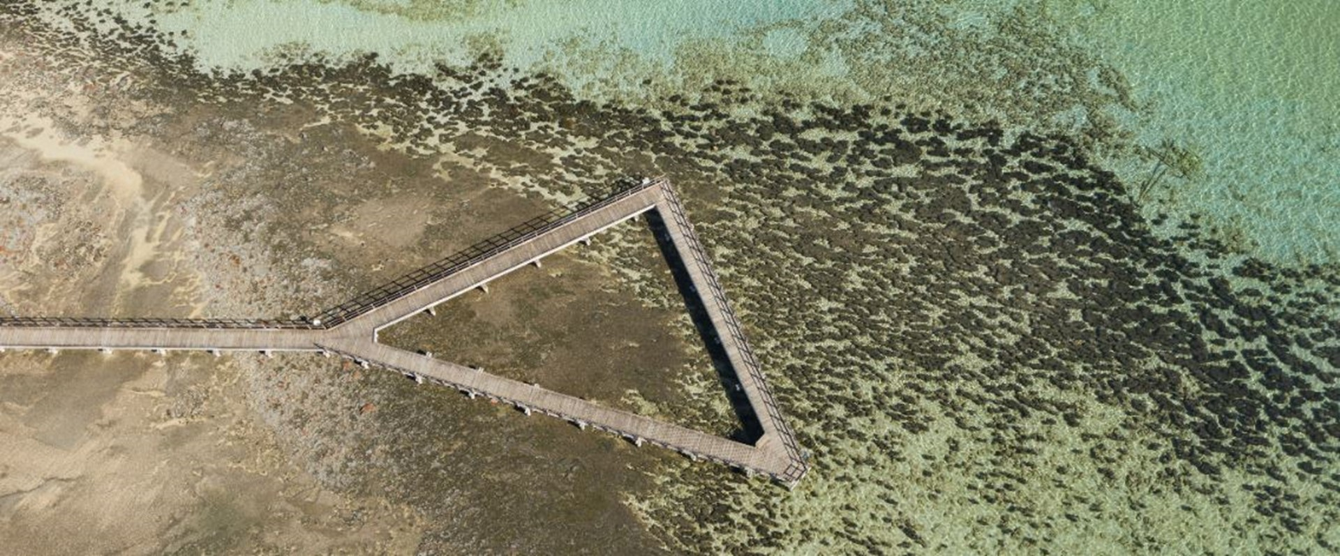 Picture: Hamelin Pool